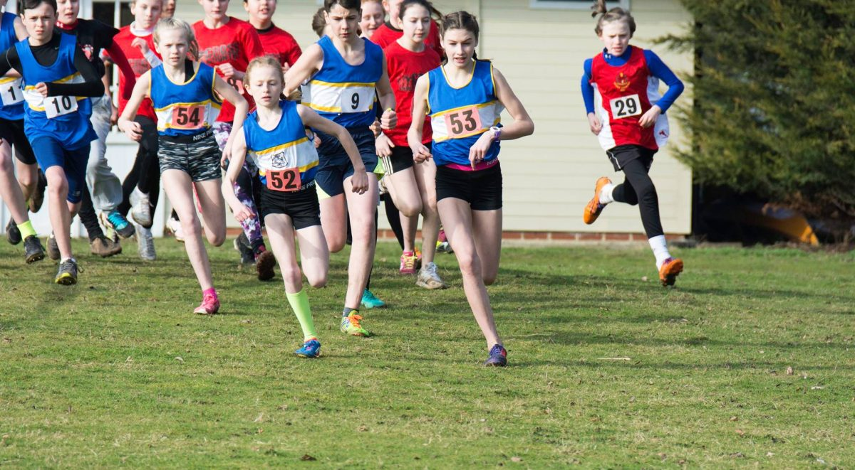 Picture of Young People at the EBGC Cross Country National Championships